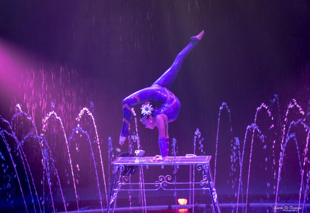 Aaron De Ocampo - Cirque Italia